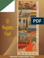 Registro Fosil