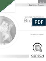 BL-4 Las Células y Sus Organelos