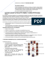 Sistema_endocrino Resumen