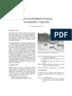 Vol54-2-1986-5.pdf