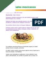 Animales mexicanos, aves y mariposas