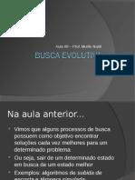Aula09BuscaEvolutiva.pdf