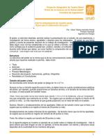 Poster - Proyecto Integrador IV
