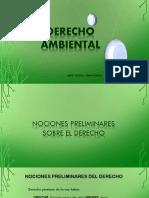 AMBIENTAL 2017 .pdf