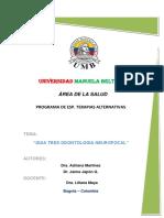 CONSULTA PREVIA guia 3.docx