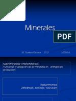 minerales y suplementacion