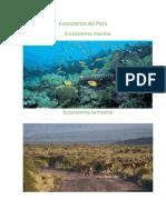Ecosistema Del Perú