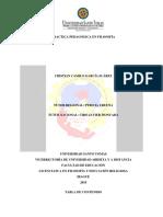 2. Informe Final