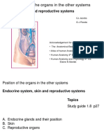 8_ Endocrine, Sexes and Skin 2019@4