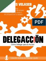 Delegación para la acción