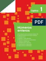 numeros enteros.pdf