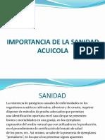 IMPORTANCIA-DE-LA-SANIDAD-ACUICOLA-CLASE-1.pptx