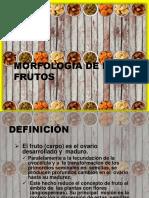 Clasificacion Frutos-convertido.pptx