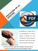 PSICOLOGIA-DE-LA-EMOCION-2 (2).pptx