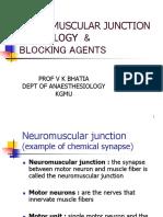Neuro Muscular Junction