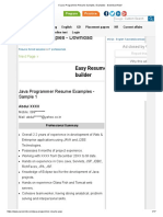 5 Java Programmer Resume Samples, Examples - Download Now!