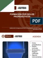 MEN -Presentacion_Ciclos Ejecutiva 24-11-2014.pdf