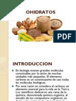 Carbohidratos Une