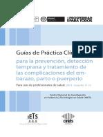 GPC_Prof_Sal_Embarazo.pdf