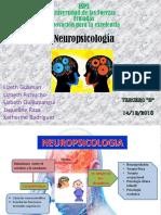 Neuropsicologia Completo (1)