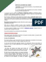 EJERCITACIÓN DE MOVIMIENTOS DE LAS PARTES DEL CUERPO.docx
