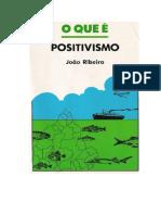 Texto 1 - O Que é o Positivismo