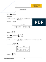 Matrices solucion UPN