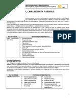 Manual Prog Bioenergética Rolando