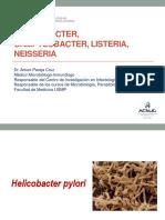 Helicobacter y Campylobacter