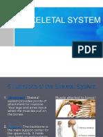 5. Skeletal System
