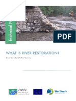 WHAT IS RIVER RESTORATION