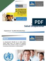3. Modulo 5. Salud Ocupacional. Resumen