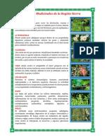 Plantas Medicinales de La Sierra