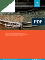 Flotacion Media t Cnico 060119