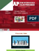 Sesion 3-Dg Liderazgoy Pigmalion (1)
