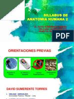 1 Sillabus Anatomia 2 - Uac 2019-2