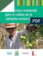 212116047-Guia-Bp-Pinon-Jatrofa.pdf