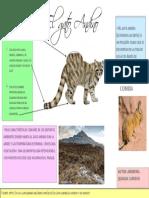 andreina quijada 2 g.pdf
