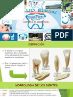 3-anatomiayfisiologiadeldiente-160820154940.pptx
