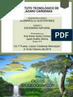 CICLOS BIOGEOQUÍMICOS (C,H,O,N, P)