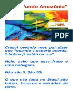 "O tal ""Fundo Amazônia"".pdf"