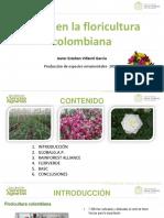 Sellos en La Floricultura Colombiana