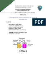 potenciometria.docx-259384599.docx