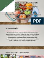 Fisiología de La Nutrición (1)