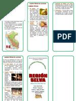 247174396-Triptico-Region-Selva.doc
