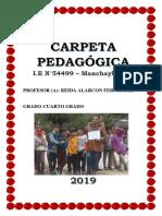 CARPETA PEDAGOGICA-2019.docx