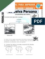 Ficha de La Selva Peruana Para Segundo de Primaria