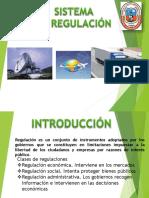 SIST DE REGULACION.pptx