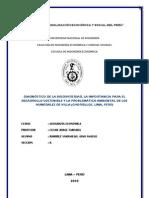 Informe Humedales de Villa