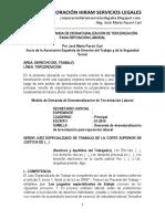 Modelo de Demanda de Desnaturalización de Tercerización - Autor José María Pacori Cari